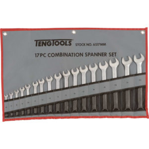 17PC ROE COMBINATION SPANNER SET (6-22MM)